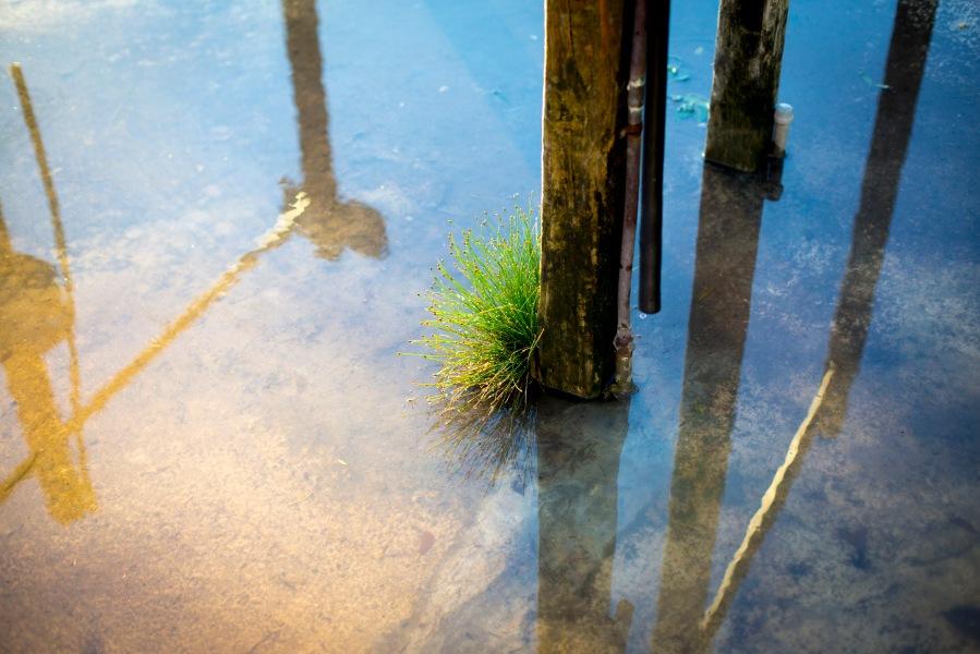 """""""Water"""" by Masha Melnik"""