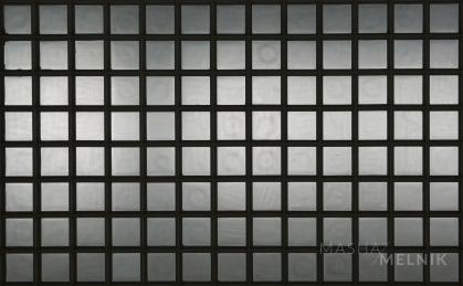 cells_8