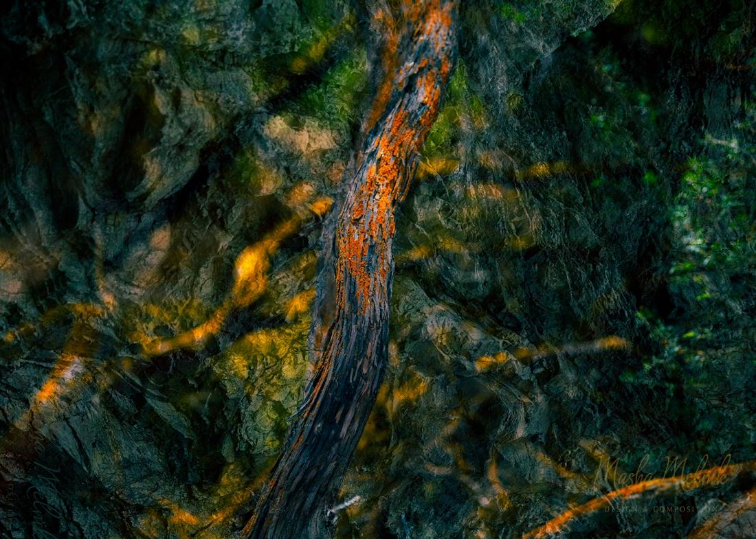 Melnik_treesstones_1
